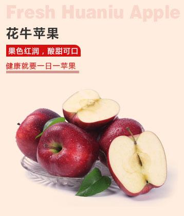 潘苹果天水花牛苹果新鲜蛇果水果礼盒冰糖心苹果12粒