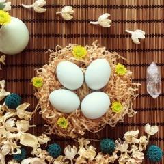 随猿散养土鸡蛋 30枚 箱装