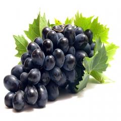 福瑞特夏黑葡萄 2.5kg 箱装