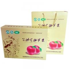典西马栏红旬邑典西苹果含碘富硒富士85mm以上 12颗 盒装