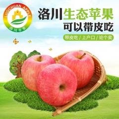 燕宾 SOD洛川苹果80#*12 3.35kg 箱装