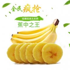 怡果馨 正宗高州香蕉高山种植一箱5斤装全国包邮原产地一件代发 2.5kg 箱装