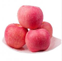 洛川苹果地标绿色红富士苹果 80mm*5kg 盒装