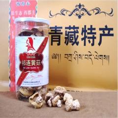 西郡主罐装祁连野生黄蘑菇x40瓶 100g*40瓶 罐装
