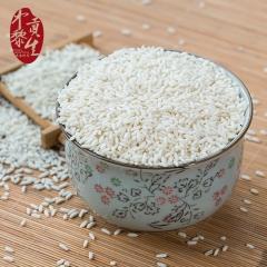 中黎贡生农家糯米长糯米包粽子白糯米 500g 袋装