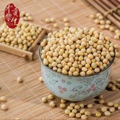 中黎贡生内蒙农户自种黄豆发豆芽打豆浆专用小黄豆非转基因大豆 500g 袋