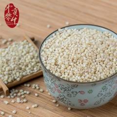 中黎贡生内蒙农家自产去皮高粱米五谷杂粮天然红高粱仁煮粥必备 500g 袋装