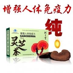 灵芝茶 1g*20袋 盒