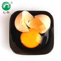 九鸽地标、无公害果园散养初生土鸡蛋,营养美味的正宗宁都黄鸡土鸡蛋净重 1000g*30枚 盒装