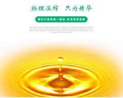 金天柱有机纯物理压榨冷榨一级头道山茶油 350ml*3瓶 提装
