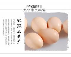 吉源无公害土鸡蛋 15枚 盒装