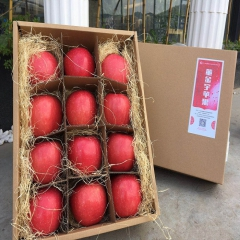 董金宇有机苹果礼盒精装85#*12枚 4kg 盒装