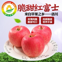 洛川红富士绿色多果乐洛川优质脆甜红富士80#24个装 6kg 箱装