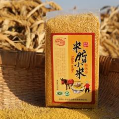 老农印象米脂黄小米新米月子米宝宝米杂粮小黄米真空包装 500g*5 袋装