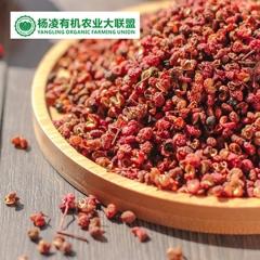 CORNER STONE 陕西大红袍花椒 有机种植 200g 箱装