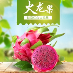 【天下丰收】运田良品 原产地越南 红心火龙果  包邮 特大果(8-12个 约12斤)140元