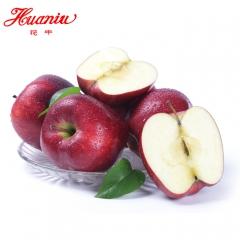 花牛花牛苹果新鲜水果礼县粉面甜脆苹果吃的包邮30粒 5KG 箱装