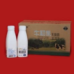 巨强牛初乳乳酸菌饮料500ml*12瓶 6L 箱装